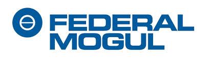 Federal Mogul  - 3109